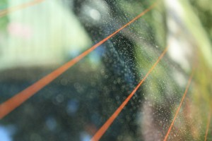 car-window-rain