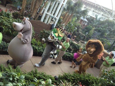 20120801 210024 Gaylord Opryland Summer Fun with Shrek package may surprise you
