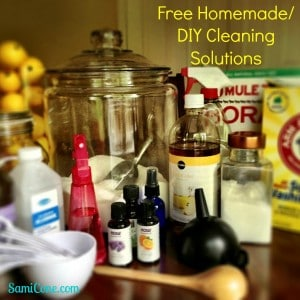 Free homemade DIY Cleaning Solutions