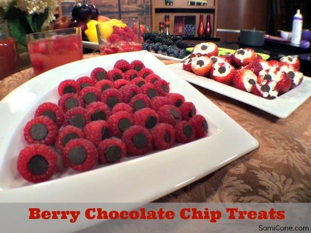 berry chocolate chip treats