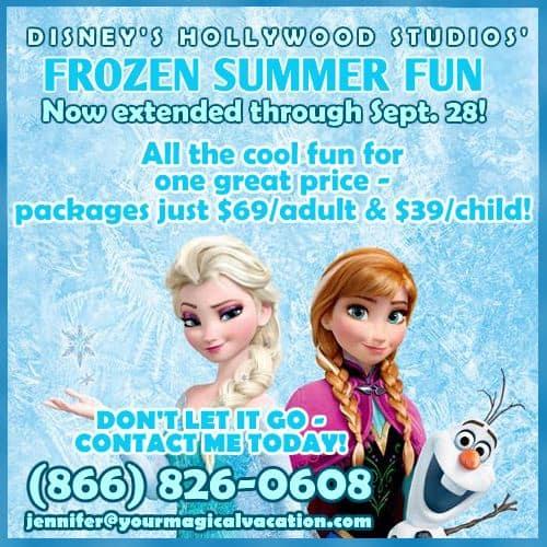 Disney Frozen Summer Fun packages