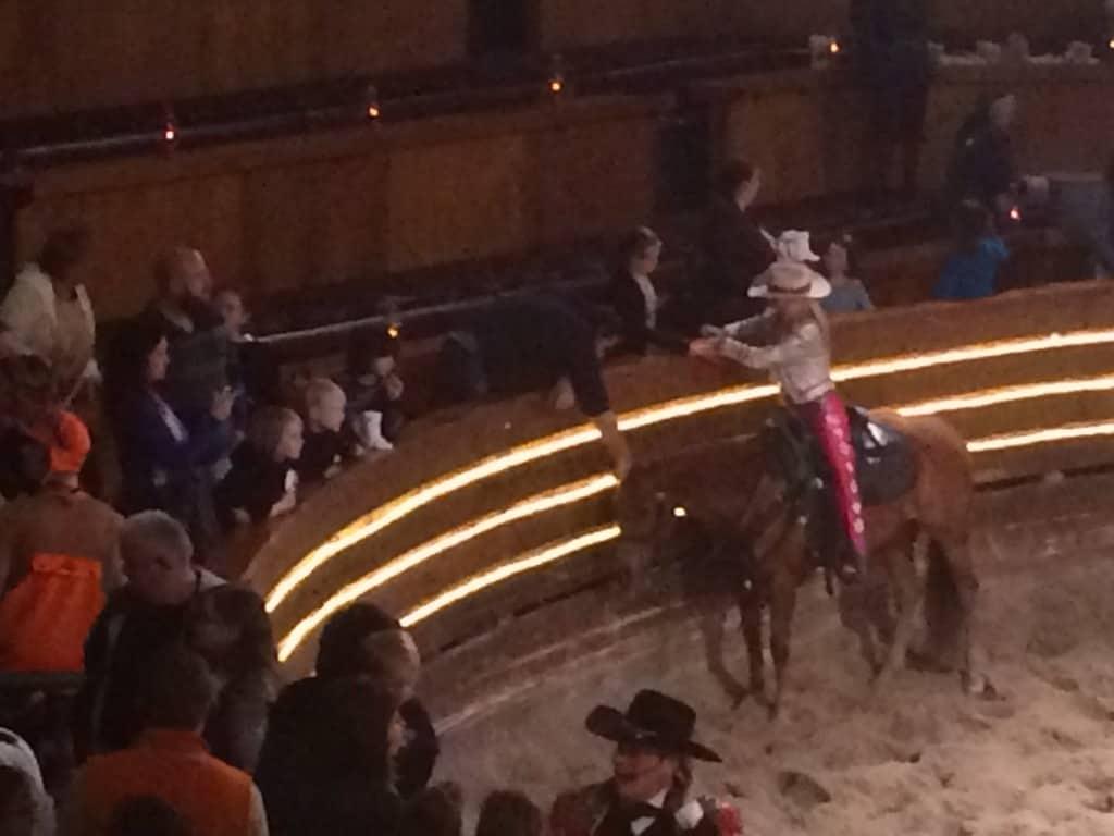 dixie stampede horse
