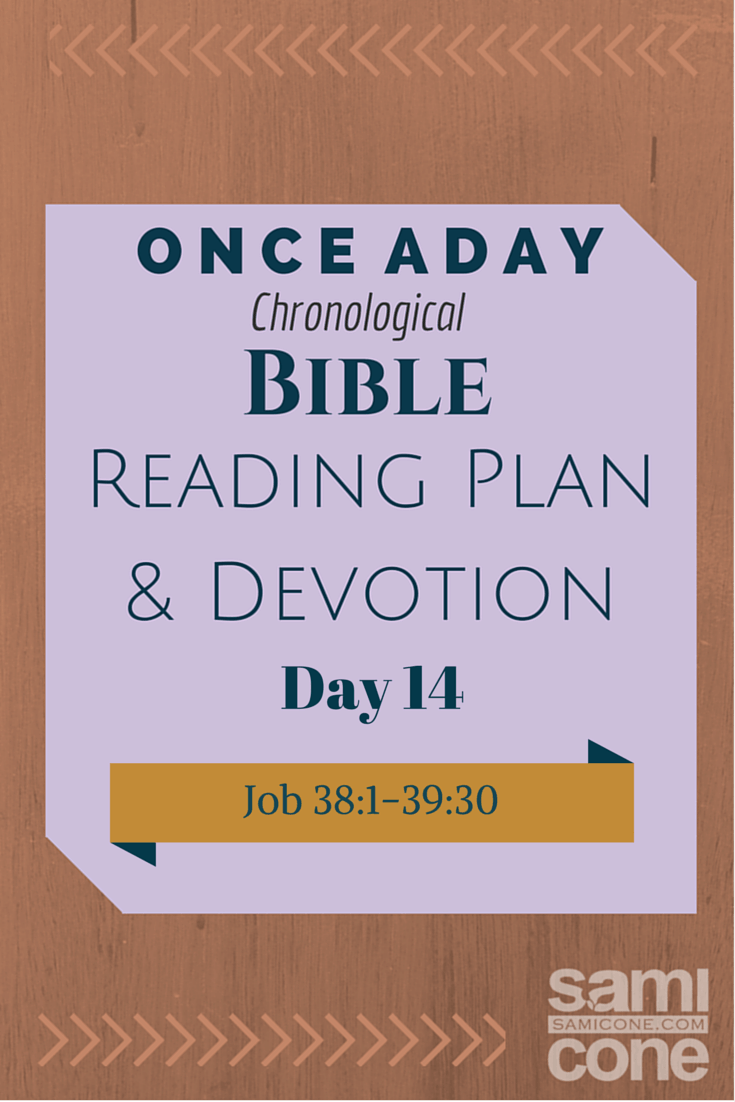 Once A Day Bible Reading Plan & Devotion Day 14