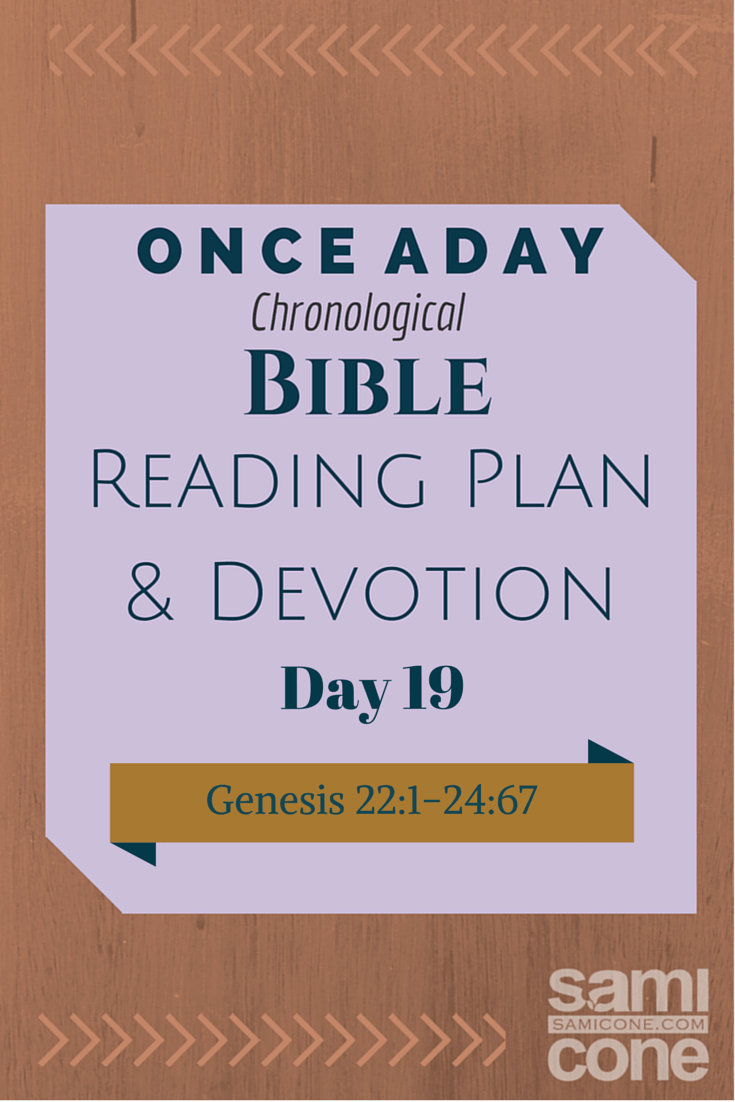 Once A Day Bible Reading Plan & Devotion Day 19