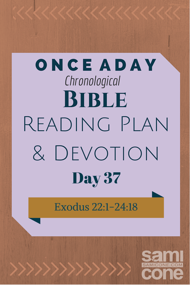 Once A Day Bible Reading Plan & Devotion Day 37