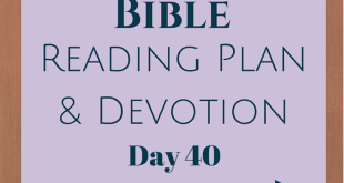 Once A Day Bible Reading Plan & Devotion Day 40