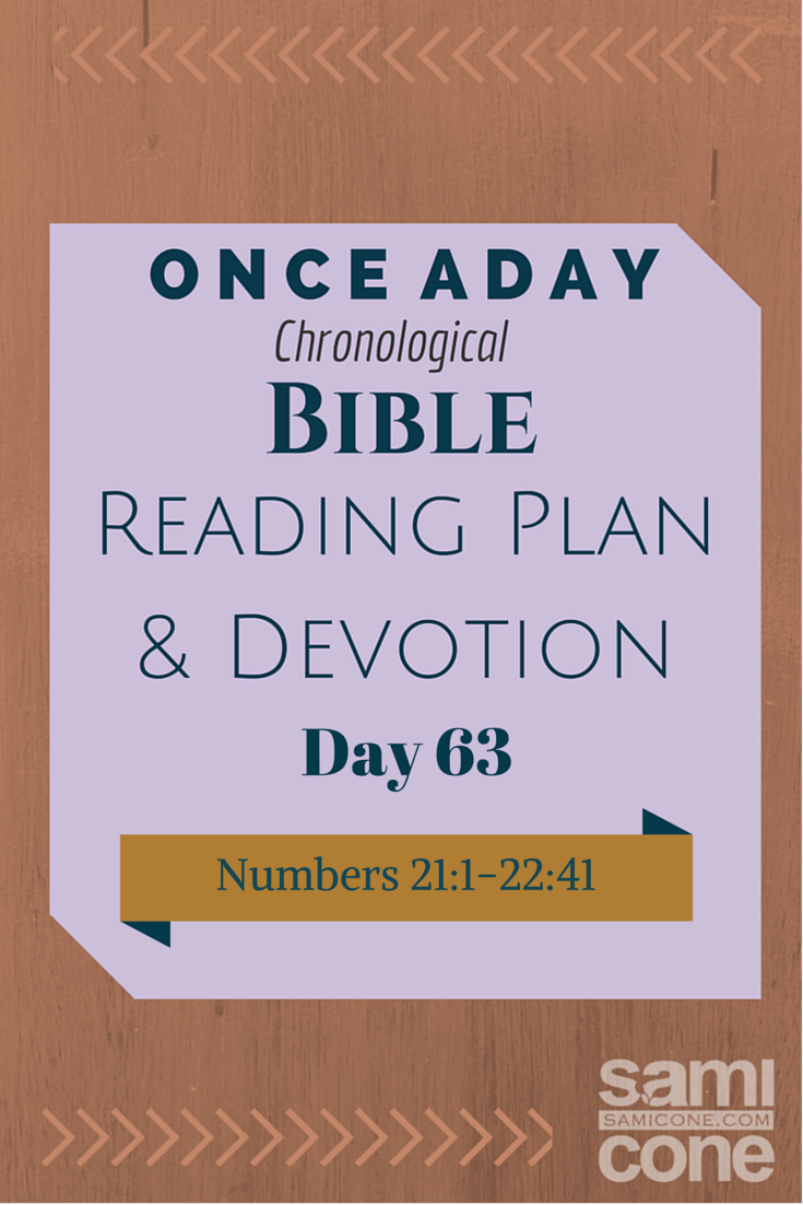 Once A Day Bible Reading Plan & Devotion Day 63