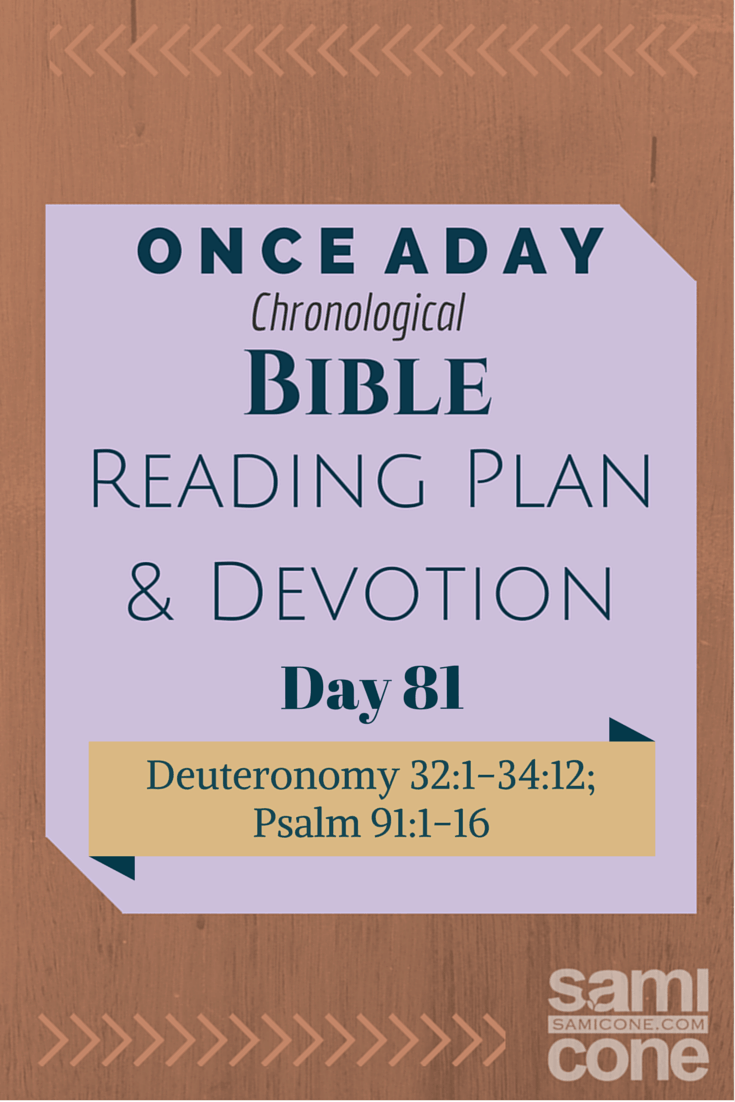 Once A Day Bible Reading Plan & Devotion Day 81