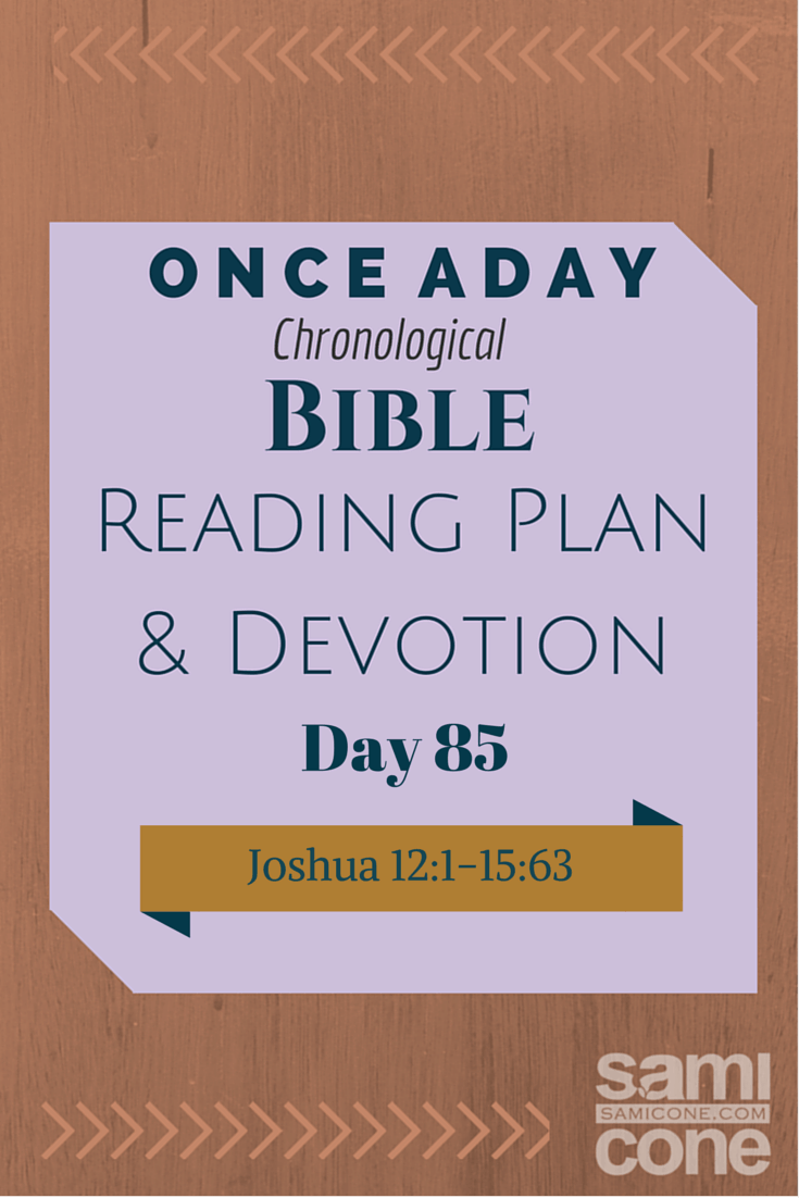 Once A Day Bible Reading Plan & Devotion Day 85