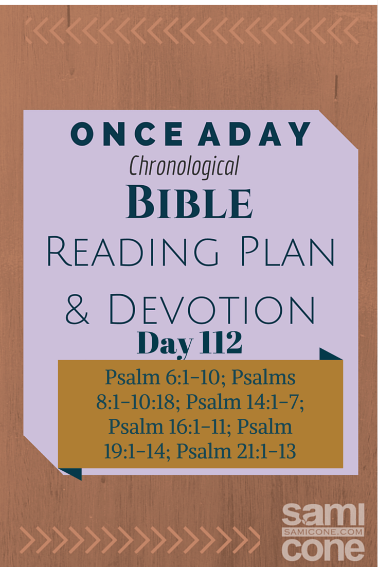 Once A Day Bible Reading Plan & Devotion Day 112