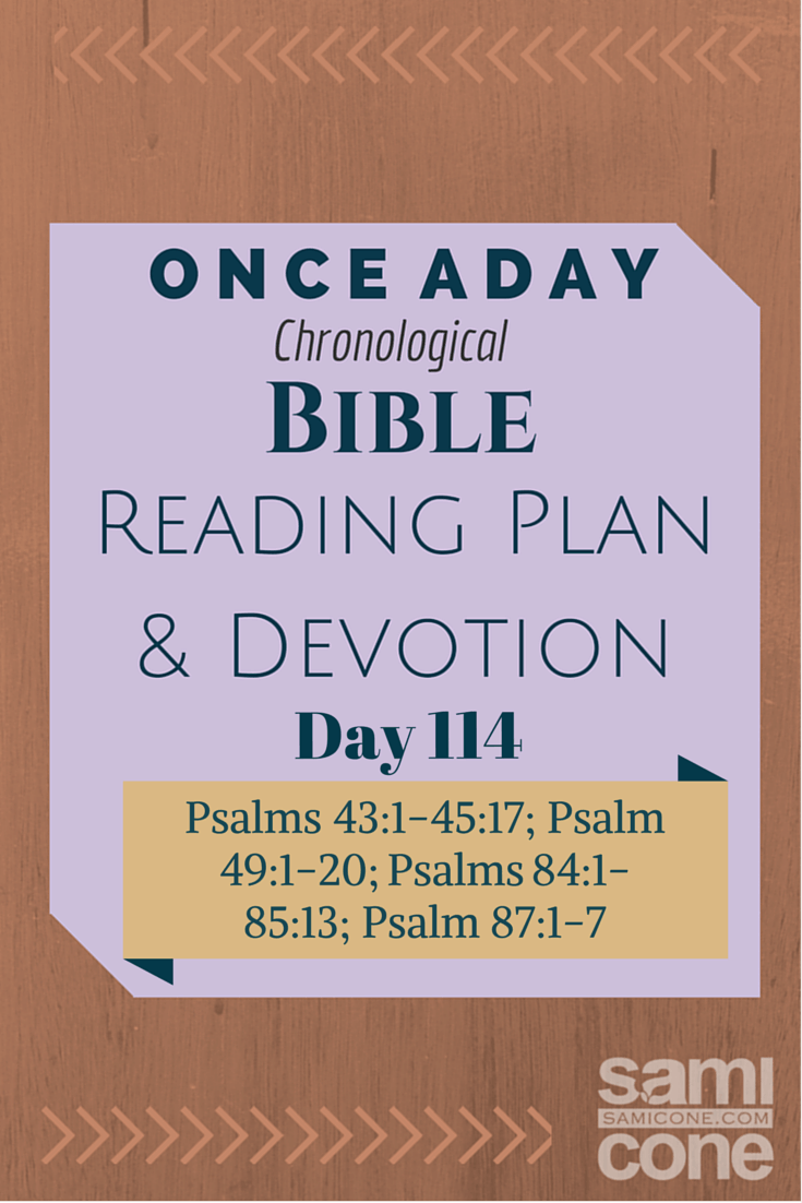Once A Day Bible Reading Plan & Devotion Day 114
