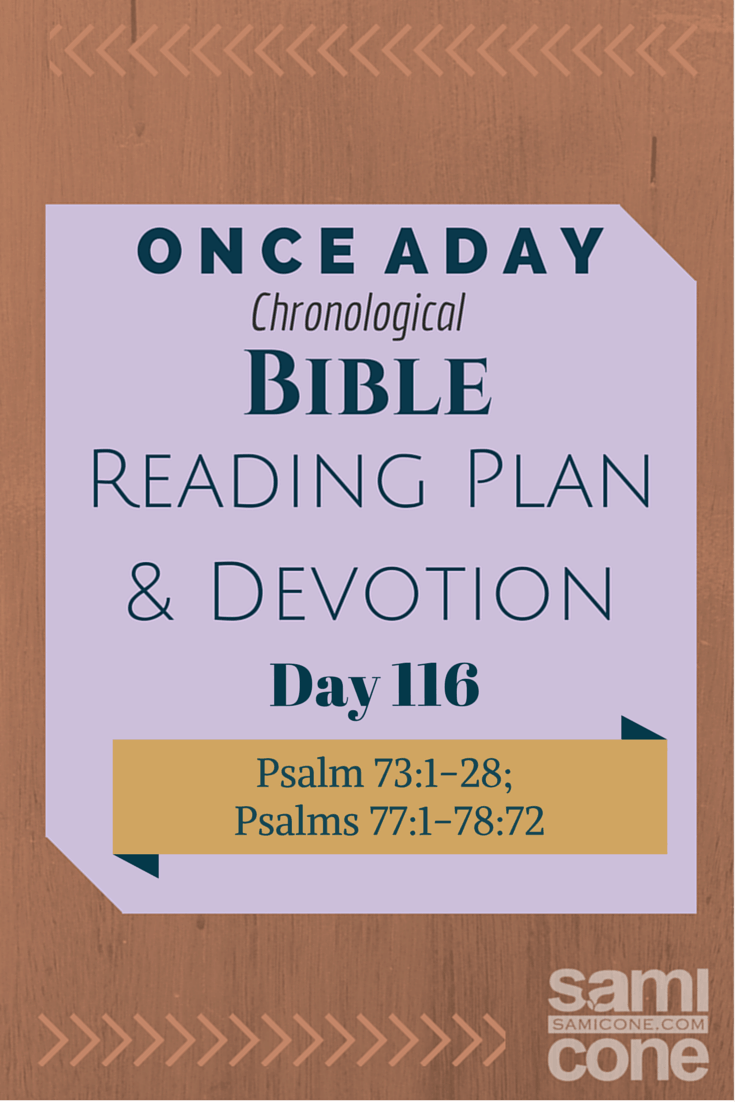 Once A Day Bible Reading Plan & Devotion Day 116