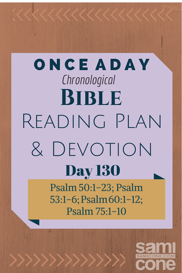 Once A Day Bible Reading Plan & Devotion Day 130