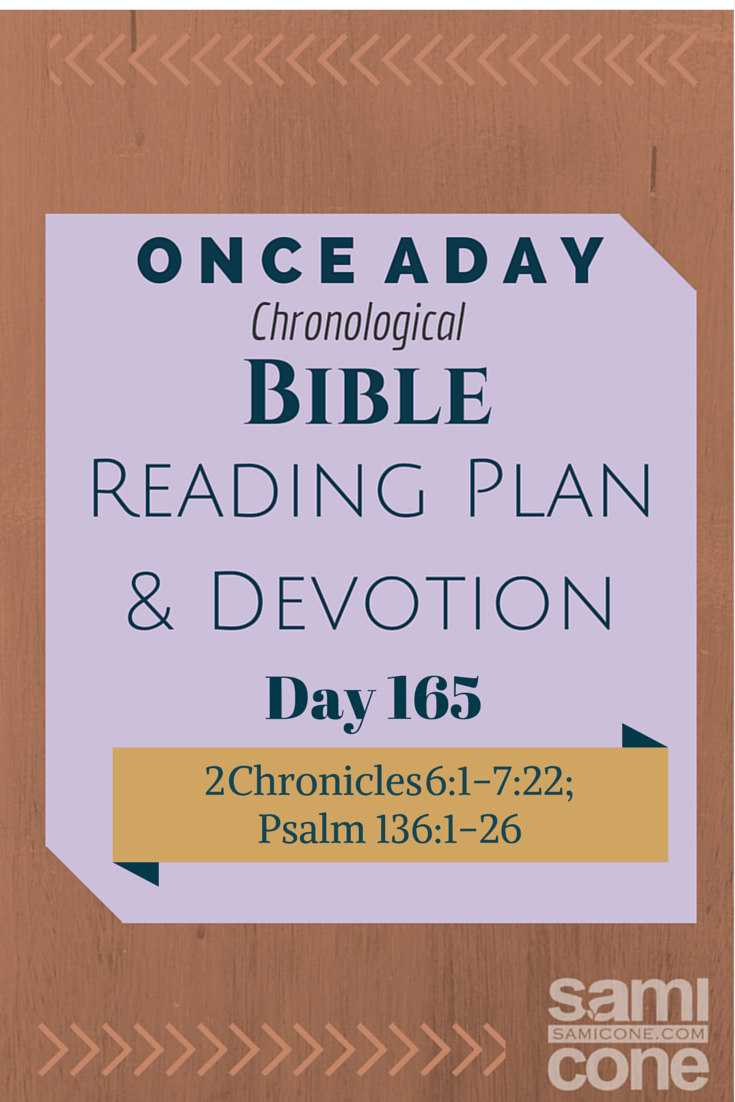 Once A Day Bible Reading Plan & Devotion Day 165