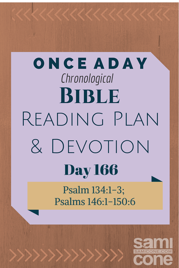 Once A Day Bible Reading Plan & Devotion Day 166