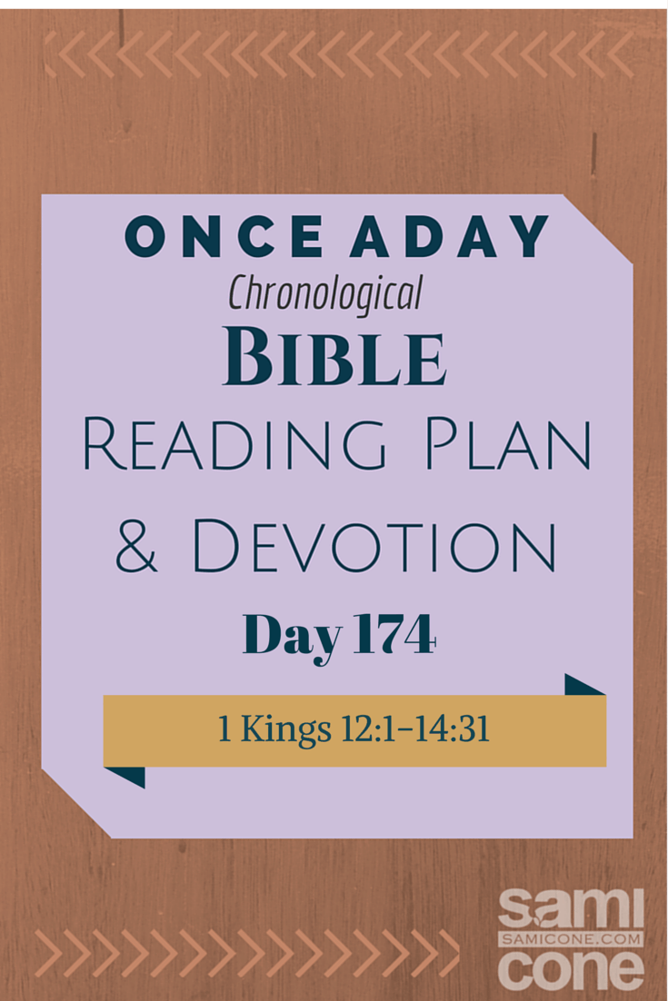 Once A Day Bible Reading Plan & Devotion Day 174