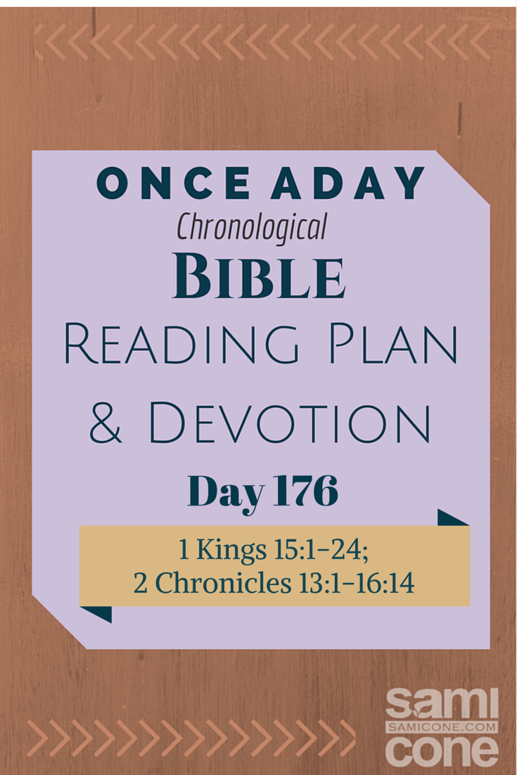Once A Day Bible Reading Plan & Devotion Day 176