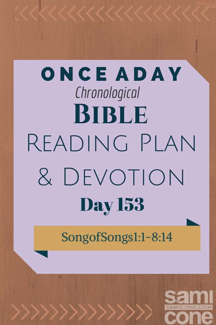 Once A Day Bible Reading Plan & Devotion Day 153