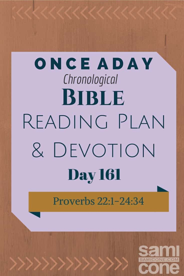 Once A Day Bible Reading Plan & Devotion Day 161