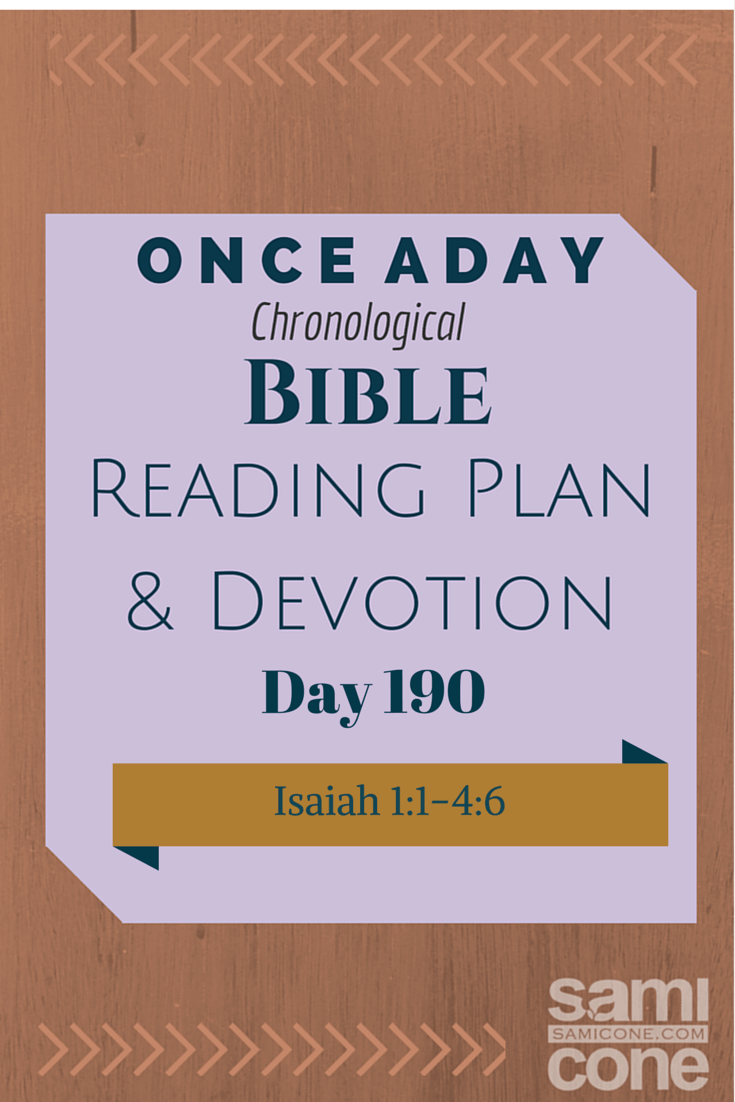 Once A Day Bible Reading Plan & Devotion Day 190