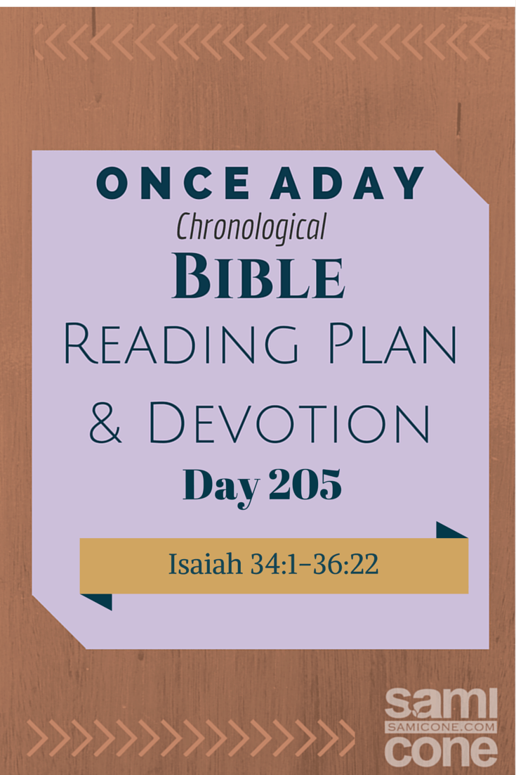 Once A Day Bible Reading Plan & Devotion Day 205