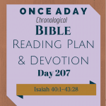 Once A Day Bible Reading Plan & Devotion Day 207