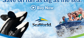 sea world image featured