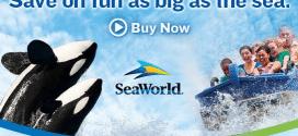 sea world image featured