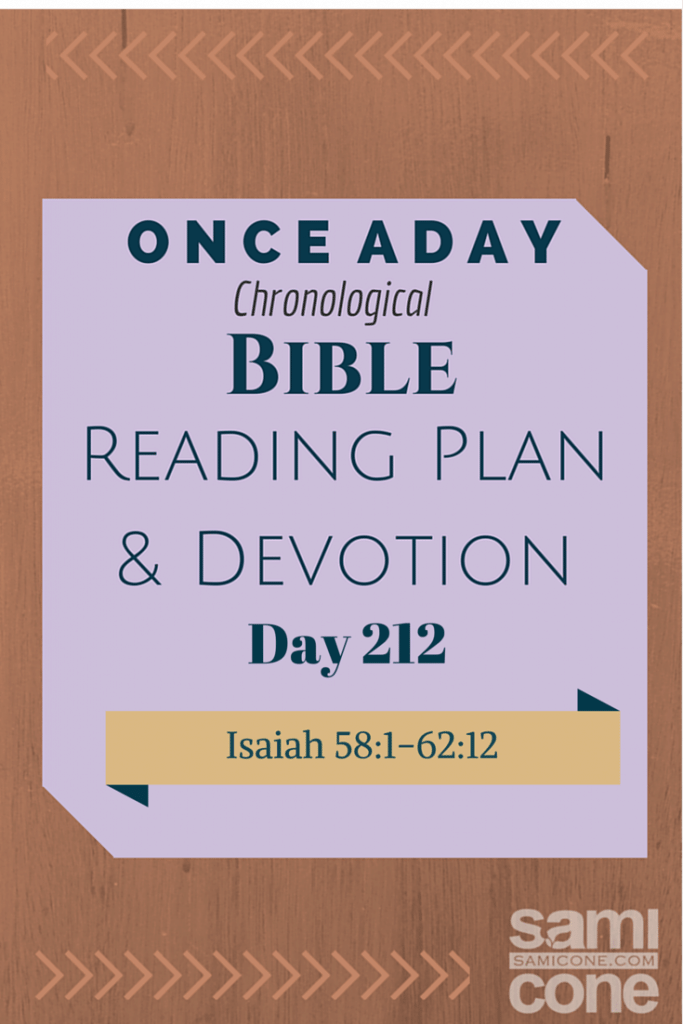 Once A Day Bible Reading Plan & Devotion Day 212