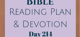 Once A Day Bible Reading Plan & Devotion: Day 214