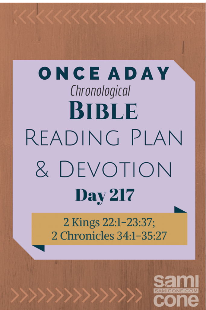 Once A Day Bible Reading Plan & Devotion Day 217