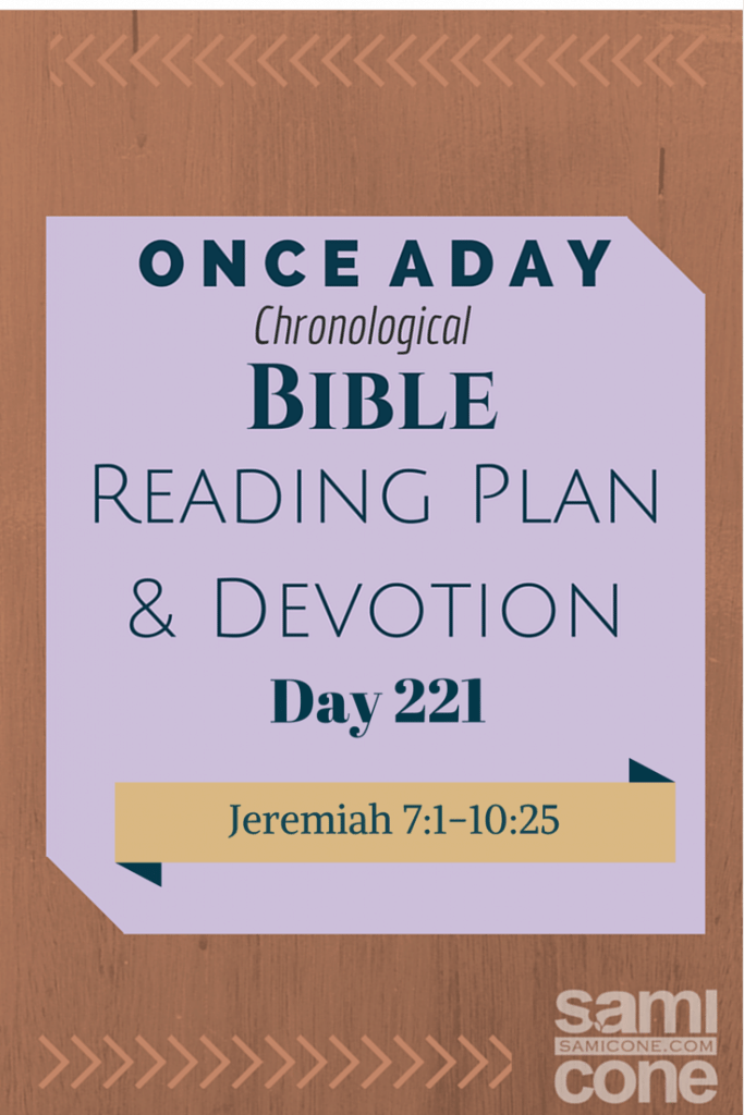 Once A Day Bible Reading Plan & Devotion Day 221