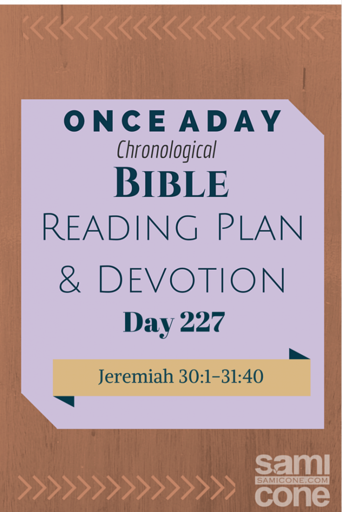 Once A Day Bible Reading Plan & Devotion Day 227