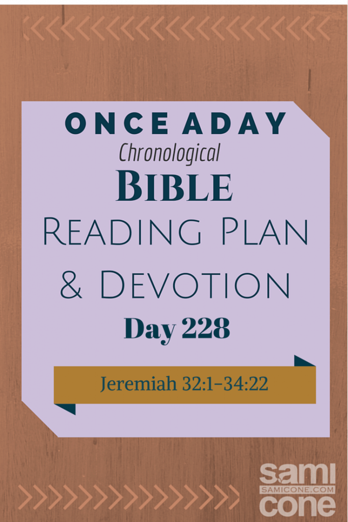 Once A Day Bible Reading Plan & Devotion Day 228