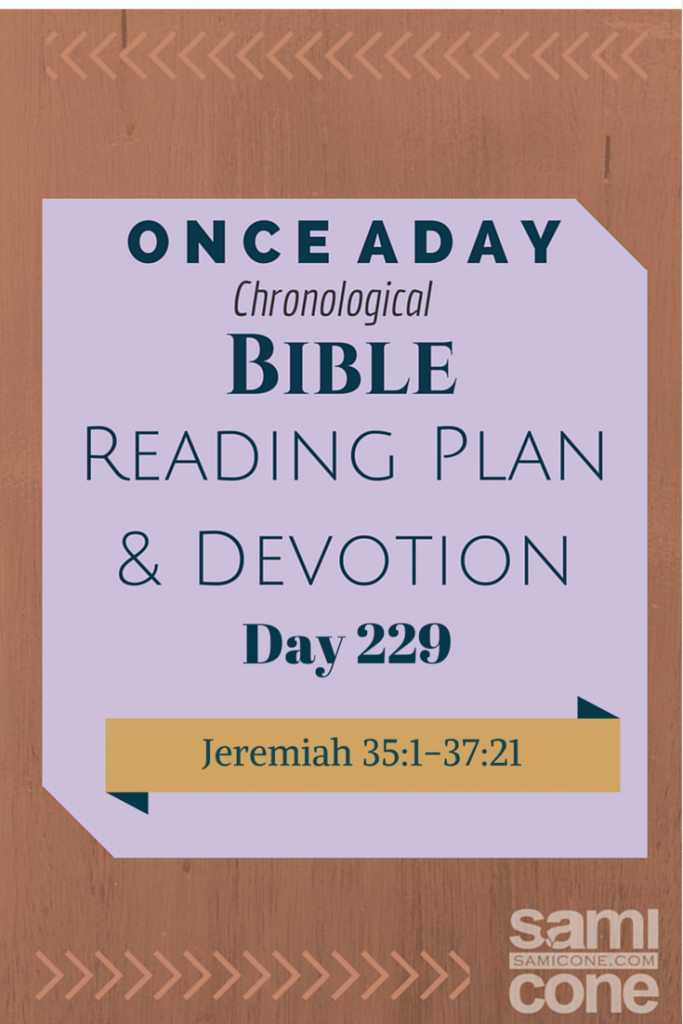 Once A Day Bible Reading Plan & Devotion Day 229