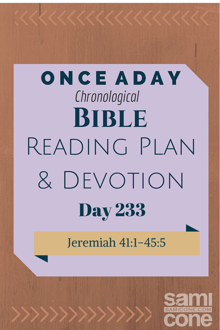 Once A Day Bible Reading Plan & Devotion Day 233