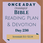 Once A Day Bible Reading Plan & Devotion Day 236 (1)
