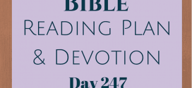 Once A Day Bible Reading Plan & Devotion: Day 247