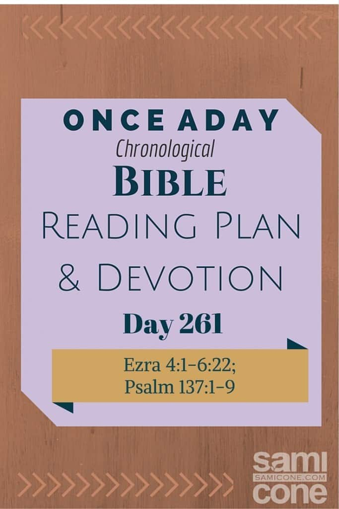 Once A Day Bible Reading Plan & Devotion Day 261