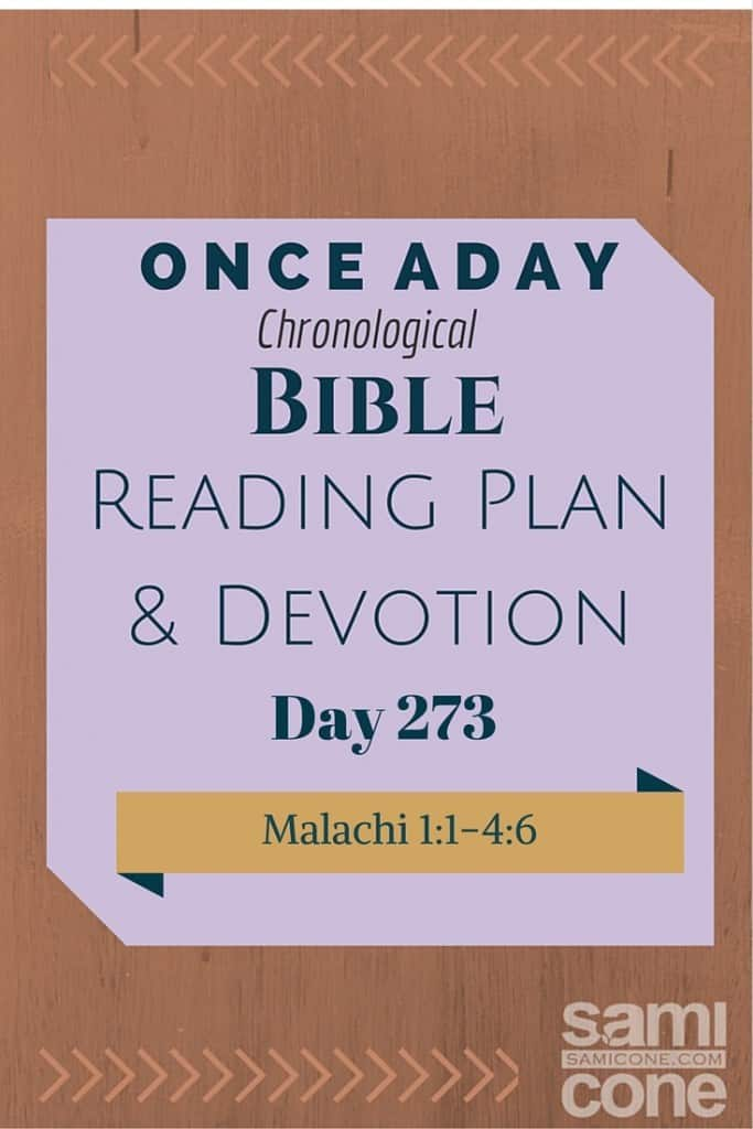 Once A Day Bible Reading Plan & Devotion Day 273
