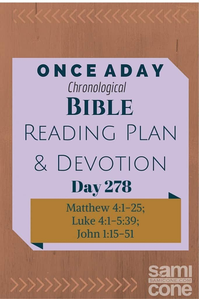 Once A Day Bible Reading Plan & Devotion Day 278
