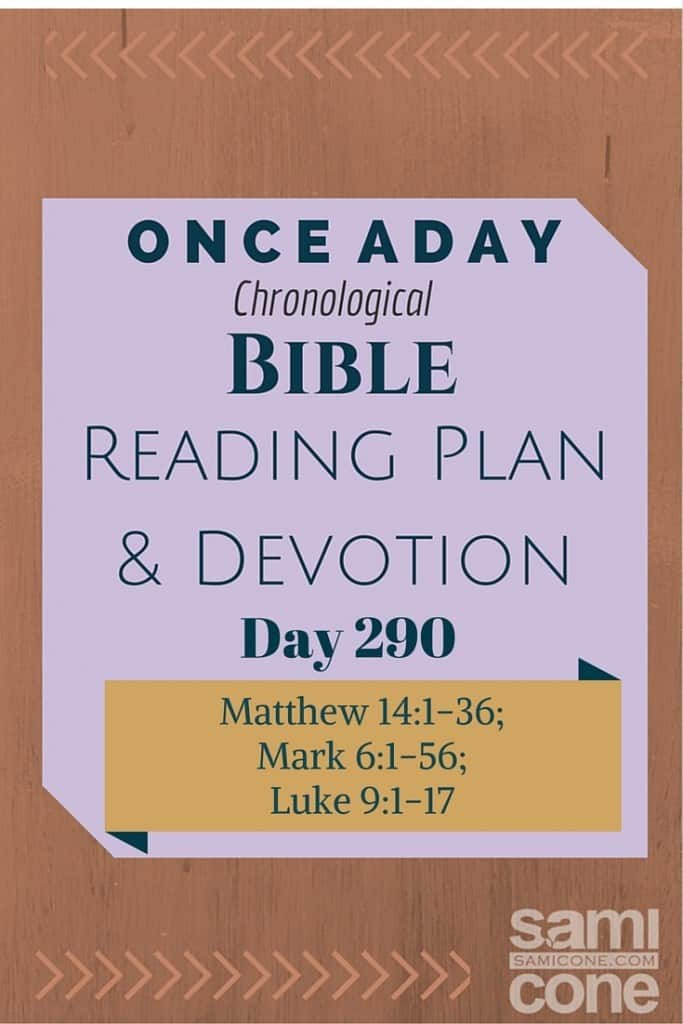 Once A Day Bible Reading Plan & Devotion Day 290