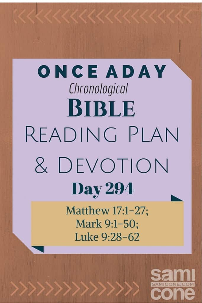 Once A Day Bible Reading Plan & Devotion Day 294