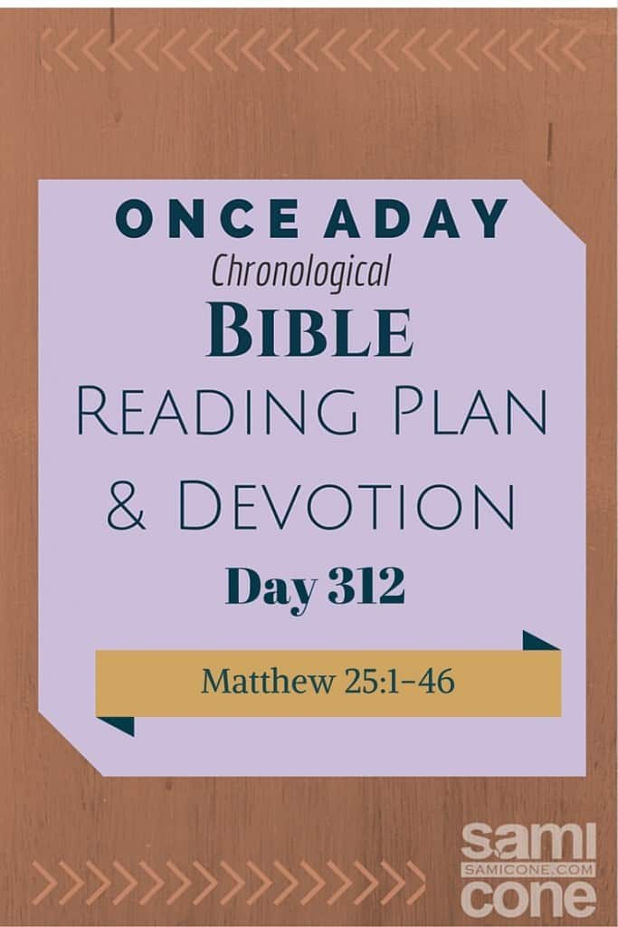Once A Day Bible Reading Plan & Devotion Day 312