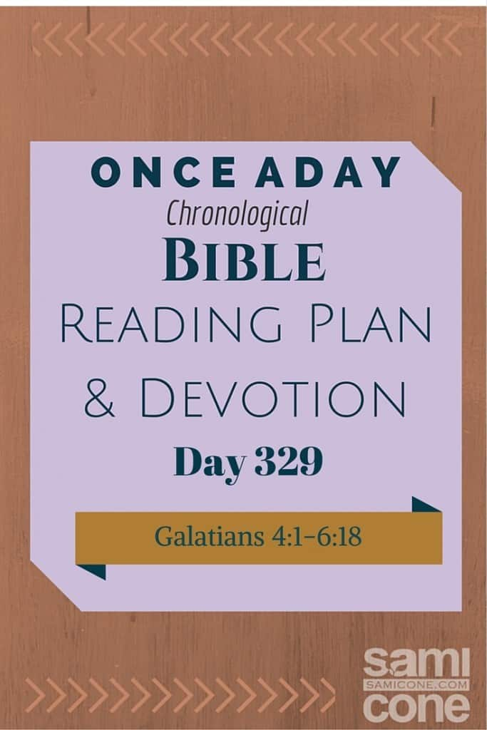 Once A Day Bible Reading Plan & Devotion Day 329