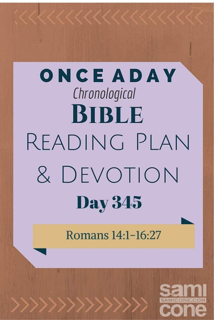 Once A Day Bible Reading Plan & Devotion Day 345