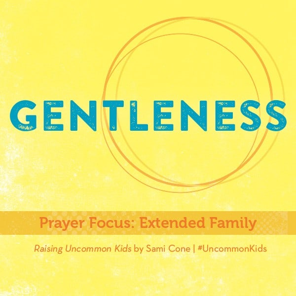 Gentleness Raising Uncommon Kids