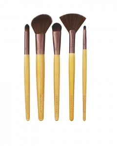 EcoTools Makeup Brush Set Giveaway Day to Night Set
