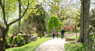 Free Cheekwood Admission on May 6 for National Public Gardens Day