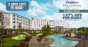 Dollywood flash sale